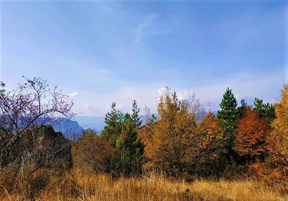 Bulgarian autumn
